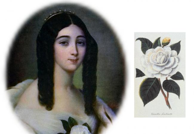 """10 Dinge, die Sie über """"La Traviata"""" wissen sollten"""